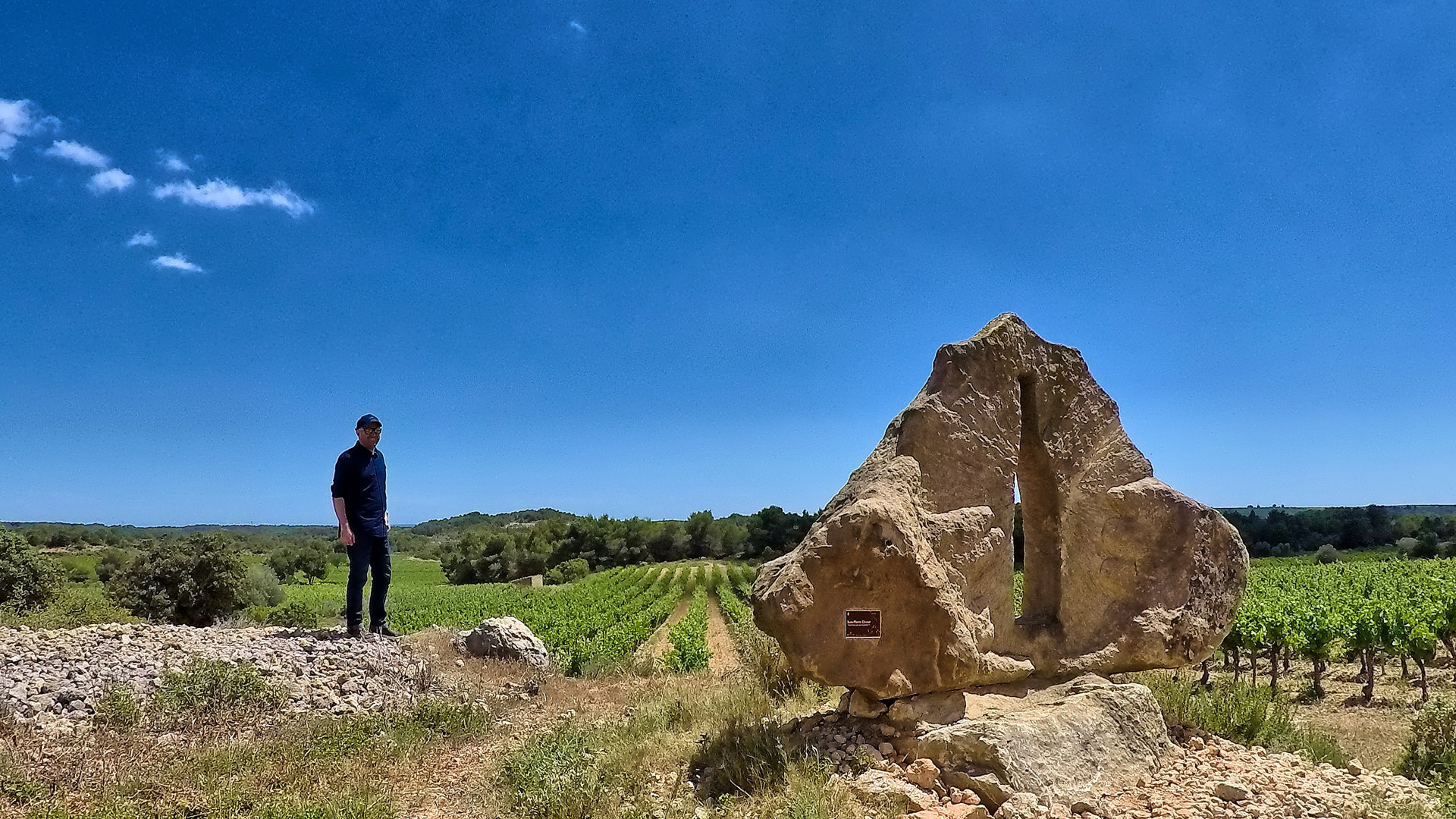 Homme devant dolmen et vignes