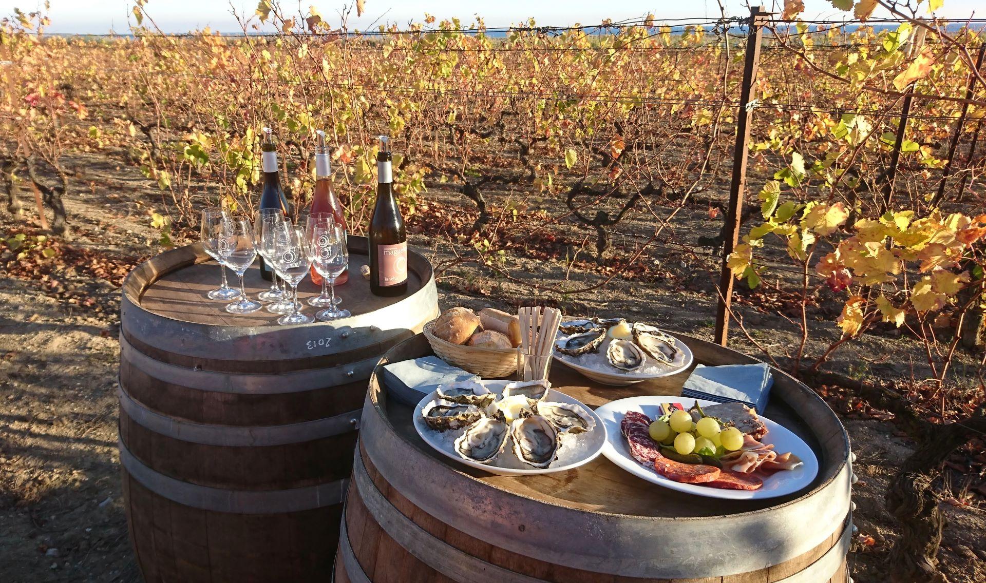 Dégustation vins et produits du terroir sur deux tonneaux au pied des vignes
