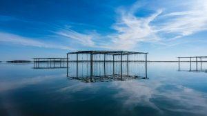 Tables à huîtres sur l'étang de Thau