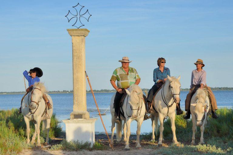 équitation hérault - Les manades en petite Camargue