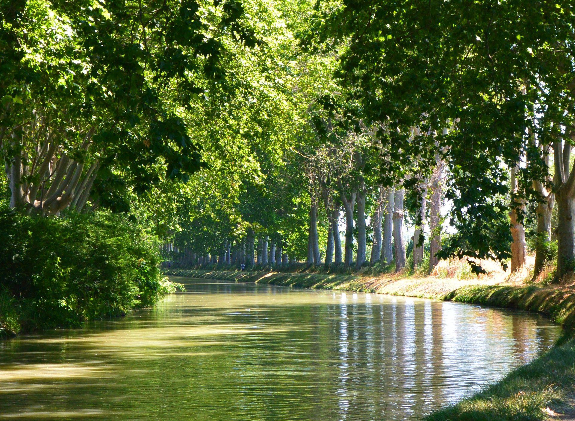 Le Canal du Midi vers Capestang