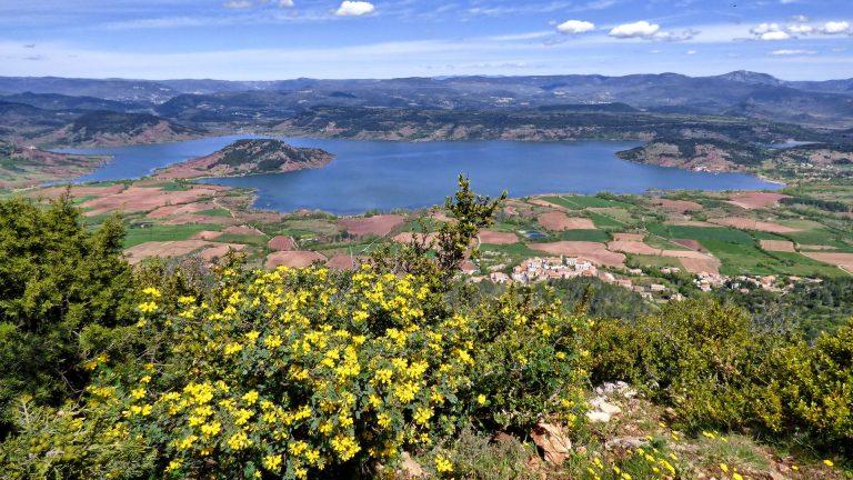 Panorama fleuri sur le lac du Salagou depuis le Mont Liausson