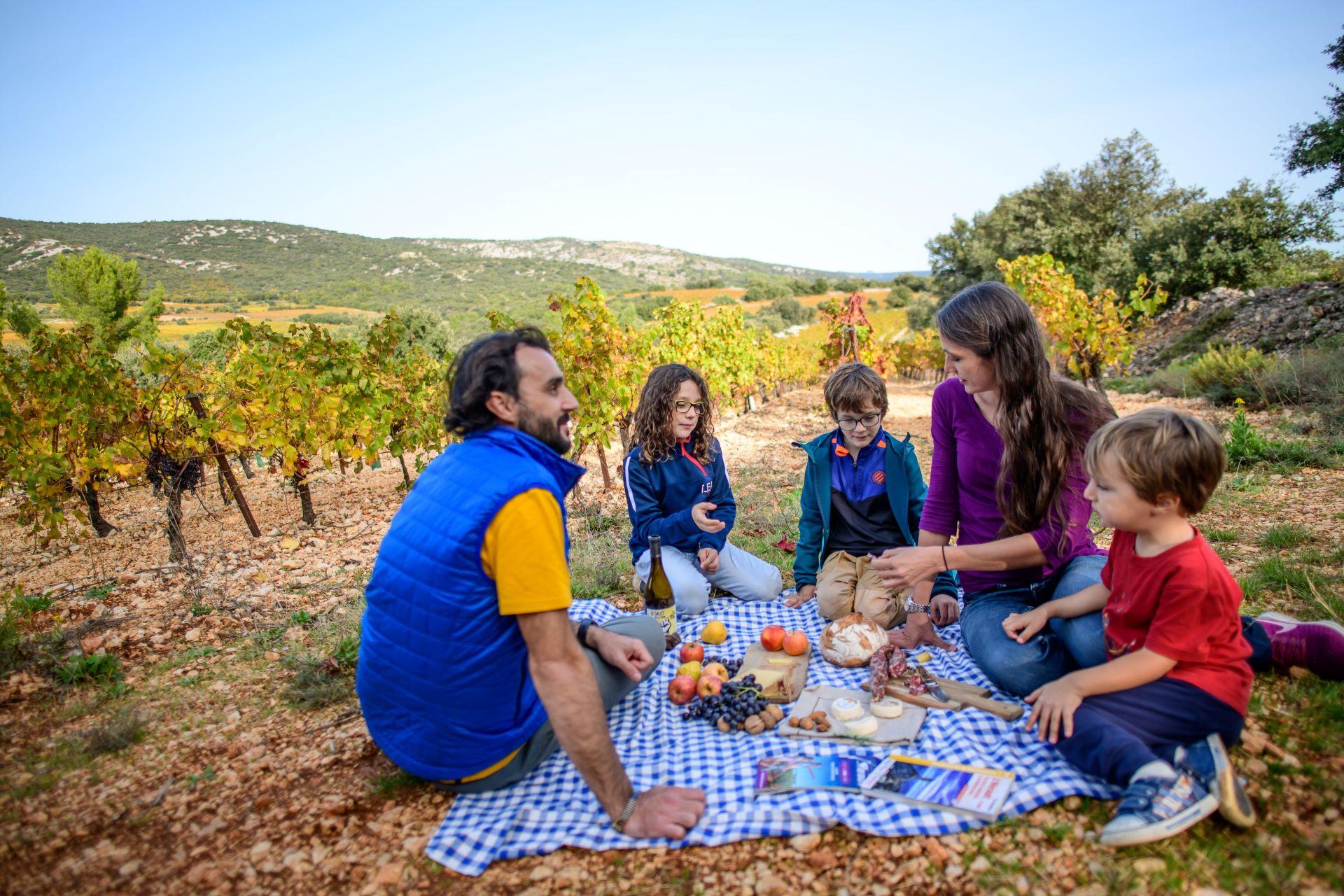 Famille qui pique-nique dans les vignobles de Montpeyroux