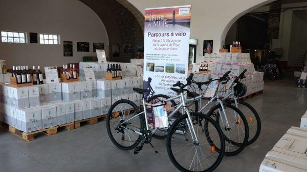 Les Caves Richemer louent des vélos à Marseillan Plage