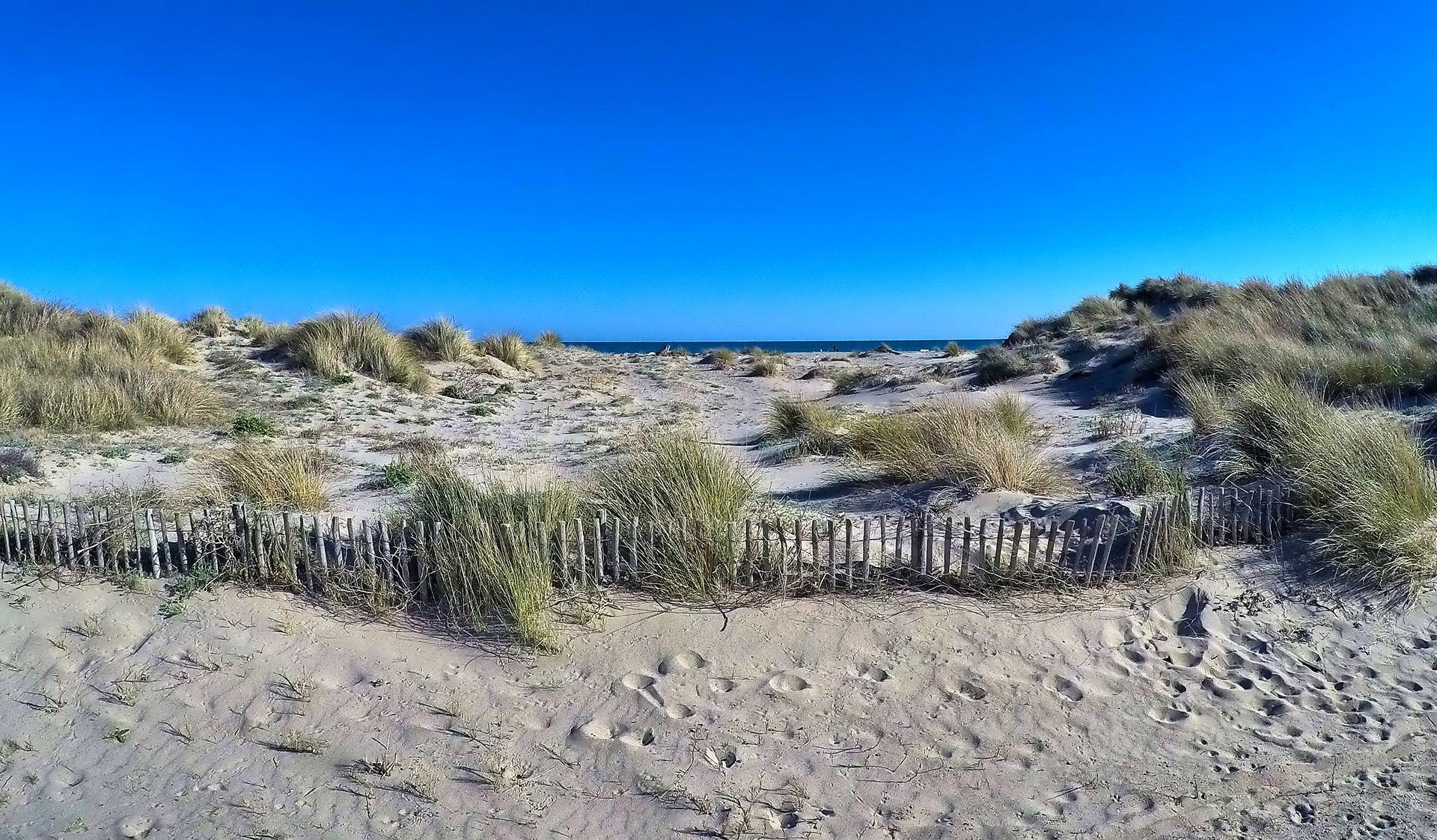 Dunes et plage à Vendres