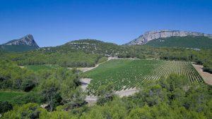 Le rocher de l'Hortus et le Pic Saint-Loup, deux géants qui se font face