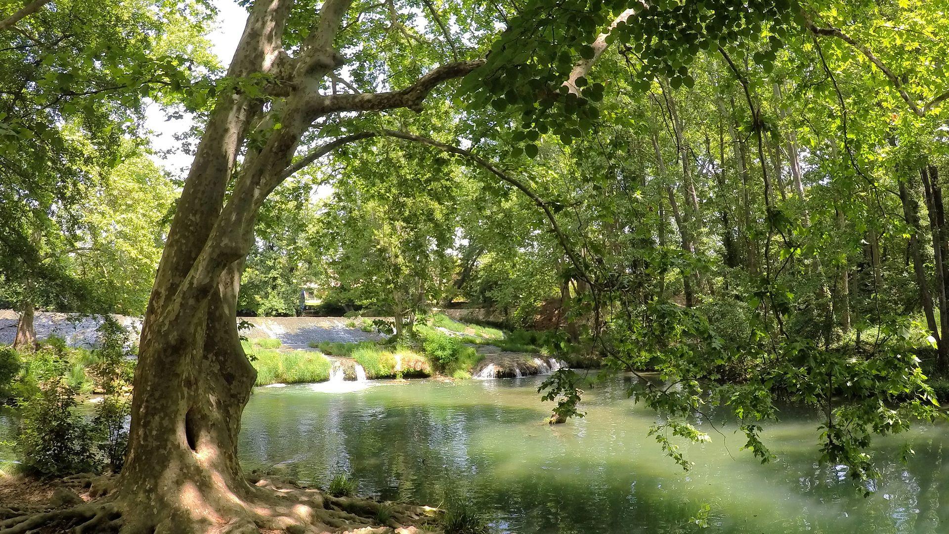 Zoo du Lunaret à Montpellier et balade au bord du Lez