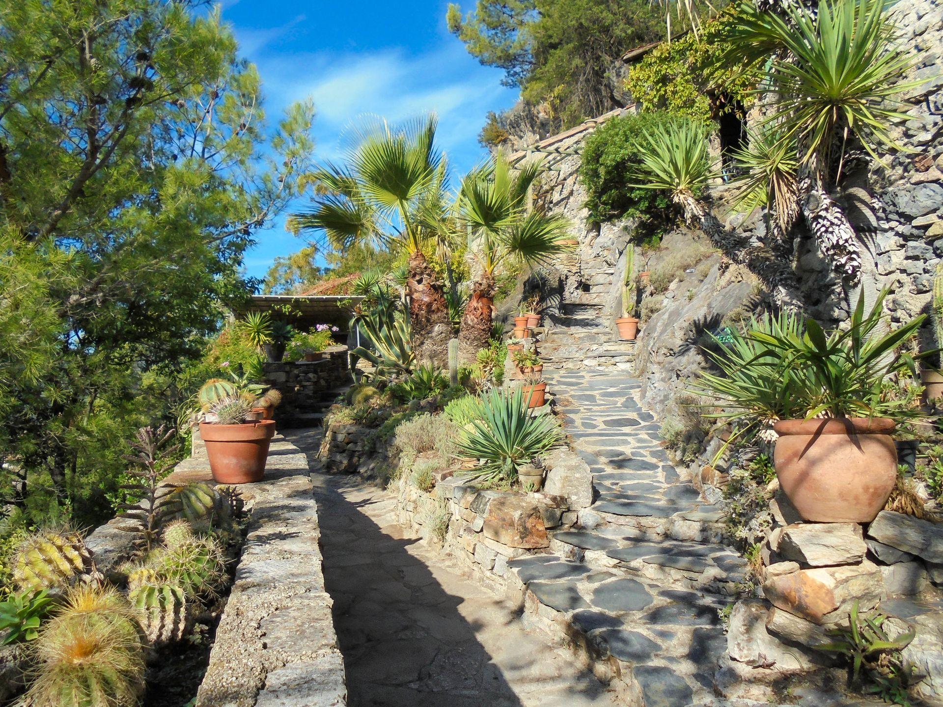 Le Jardin Méditerranéen de Roquebrun