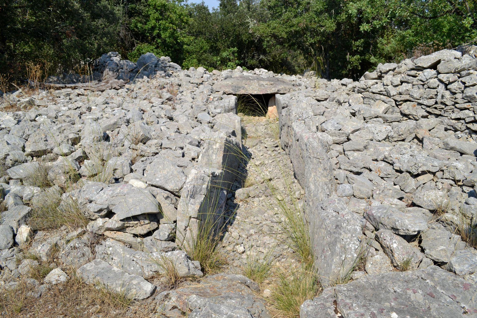 Le Dolmen de la Draille à Viols-le-Fort