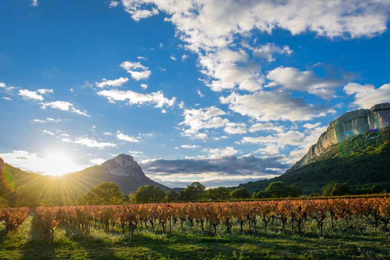 Levé de soleil sur le pi Saint-Loup, face à l'Hortus