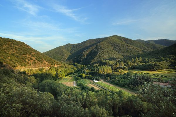 Haute Vallée de l'Orb