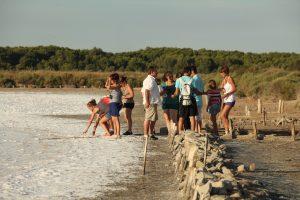Groupe de Personnes en Balade découverte des anciens salins à Frontignan