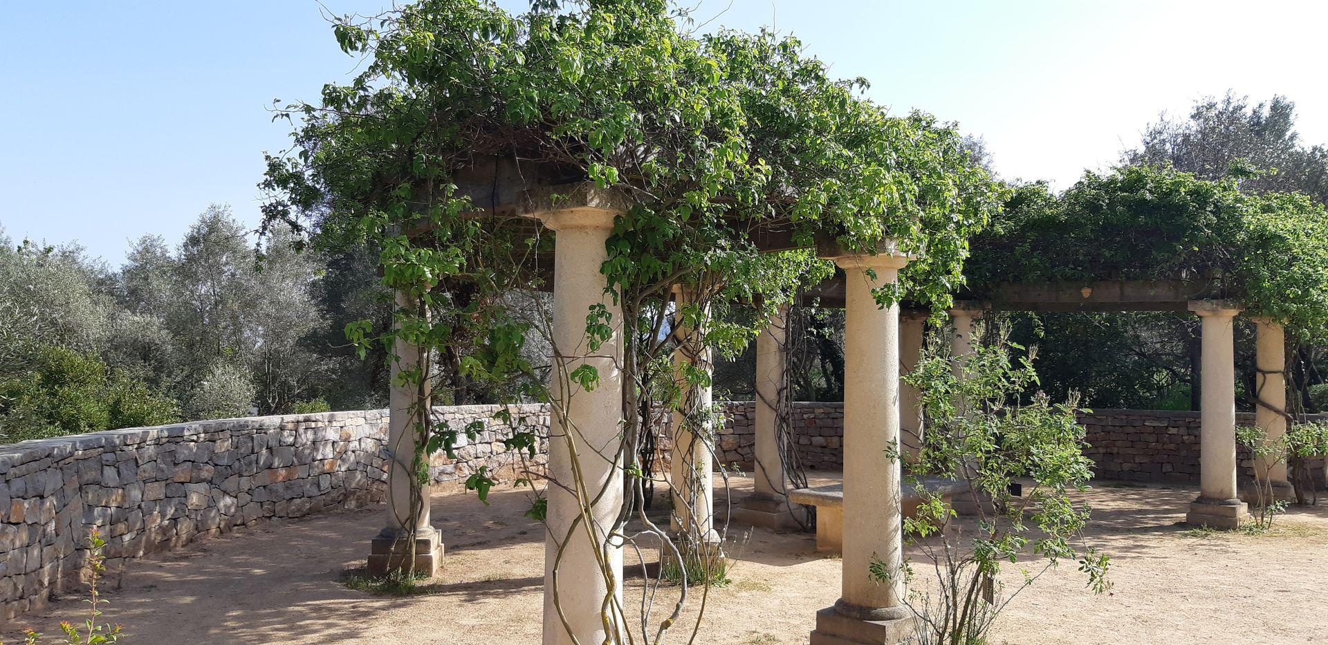 Balaruc-les-Bains, roseraie du Jardin Antique Méditerranéen