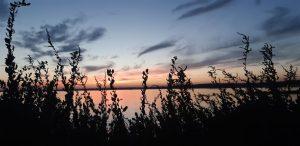 Balaruc coucher de soleil sur l'étang de Thau