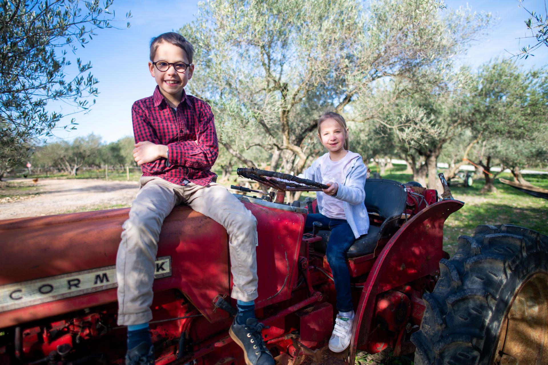 Enfants dans un champs d'olivier, assis sur un tracteur
