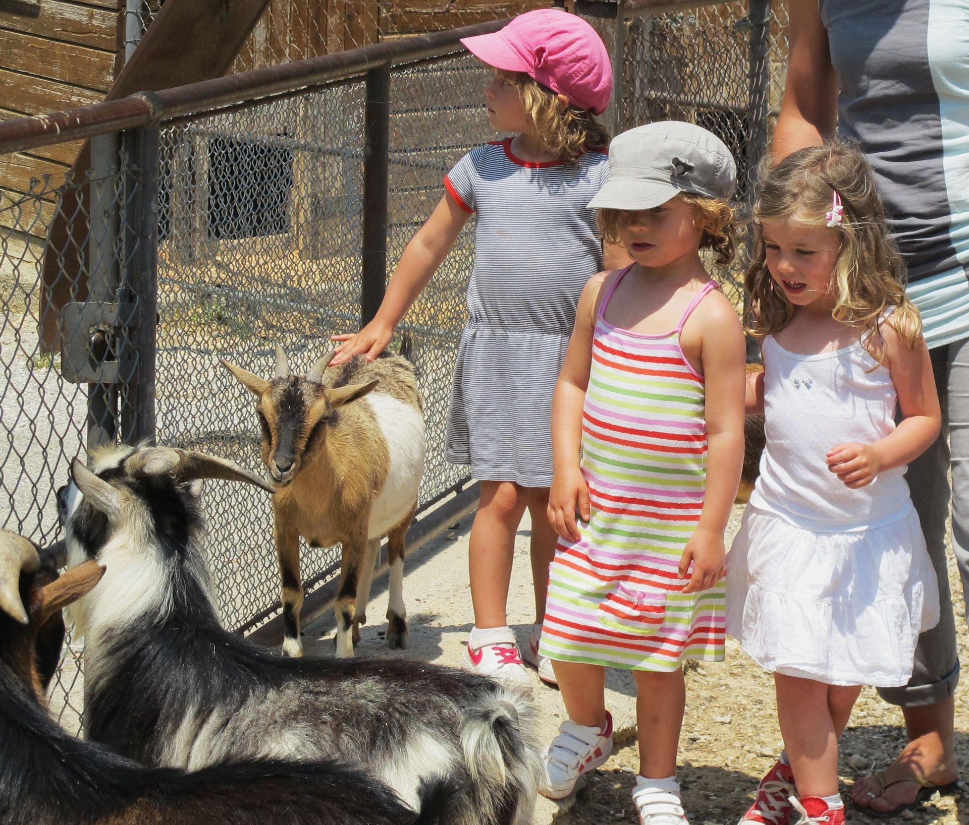 Parcs animalier en famille
