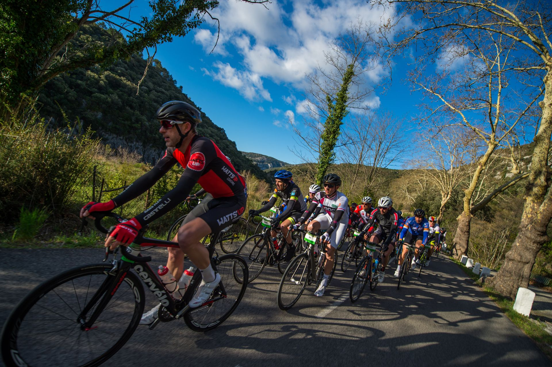 Cyclosportifs pendant l'Héraultaise