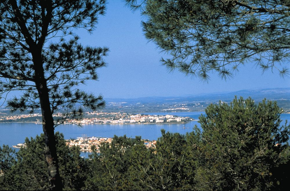 Vue du Jardin Antique Méditerranée sur le bassin de Thau