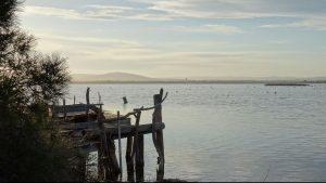 Avancée sur l'étang de l'Arnel au coucher de soleil