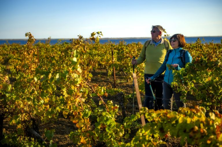 Un couple de jeuniors en train de randonner dans les vignes du Languedoc avec l'étang de Thau en toile de fond