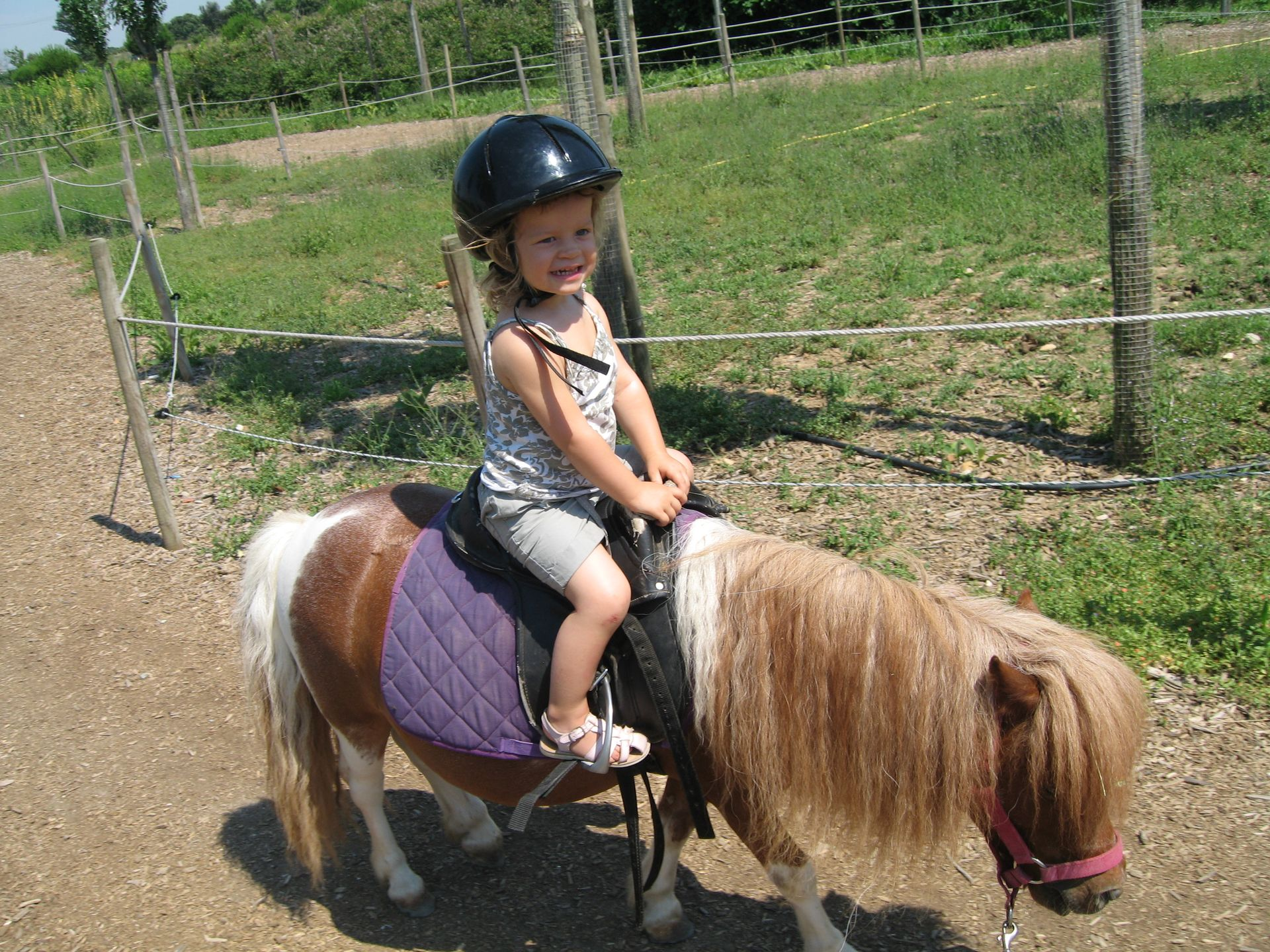 Petite fille en balade sur un poney, sortie en famille dans un parc animalier
