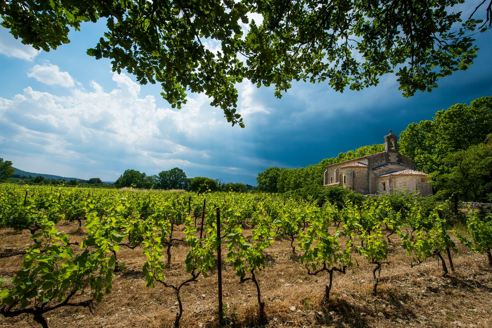 Chapelle Notre dame d'Alairac dans les vignes