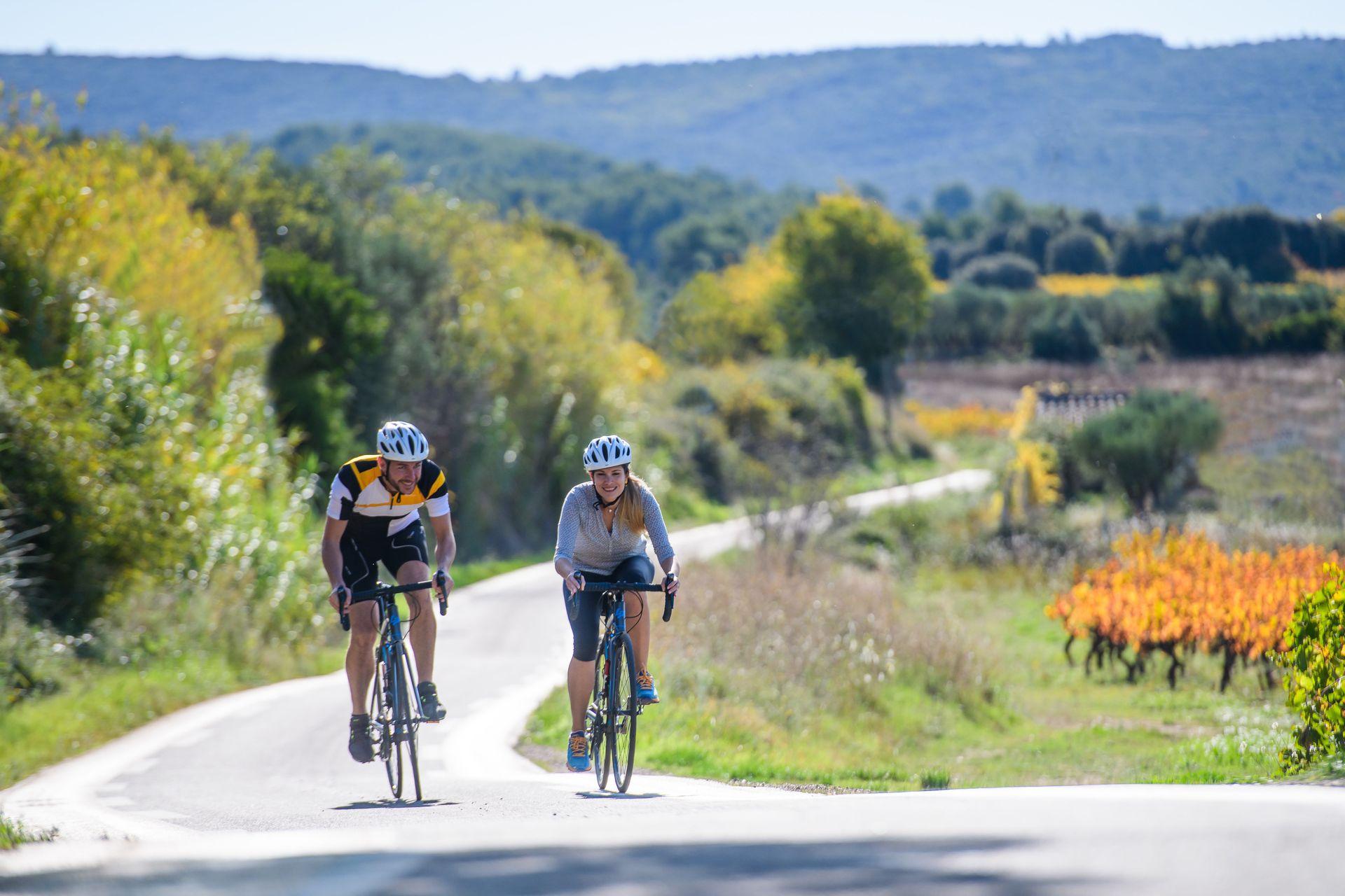 Couple de cyclotouristes dans le vignoble