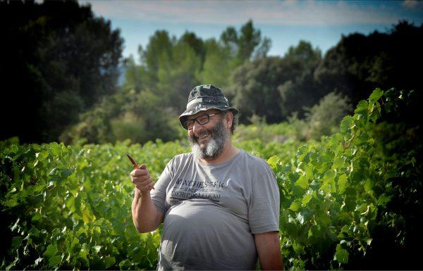 Vigneron très souriant sécateur en main dans les vignes