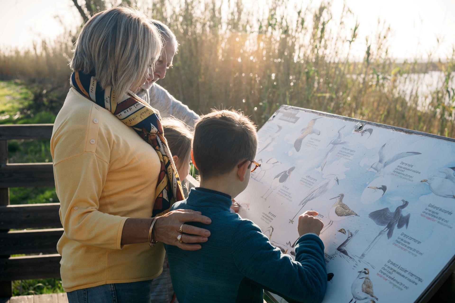Faune au bord de l'étang enfants et grands-parents