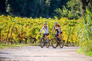 vélo en couple dans les vignes