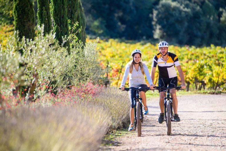 Couple à vélo sur chemin de vigne