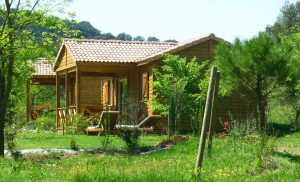 Cabane au camping Domaine d'Anglas
