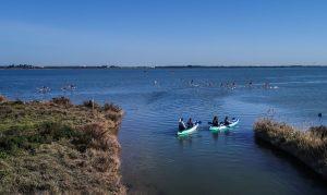 Canoë sur les canaxu de Palavas les Flots