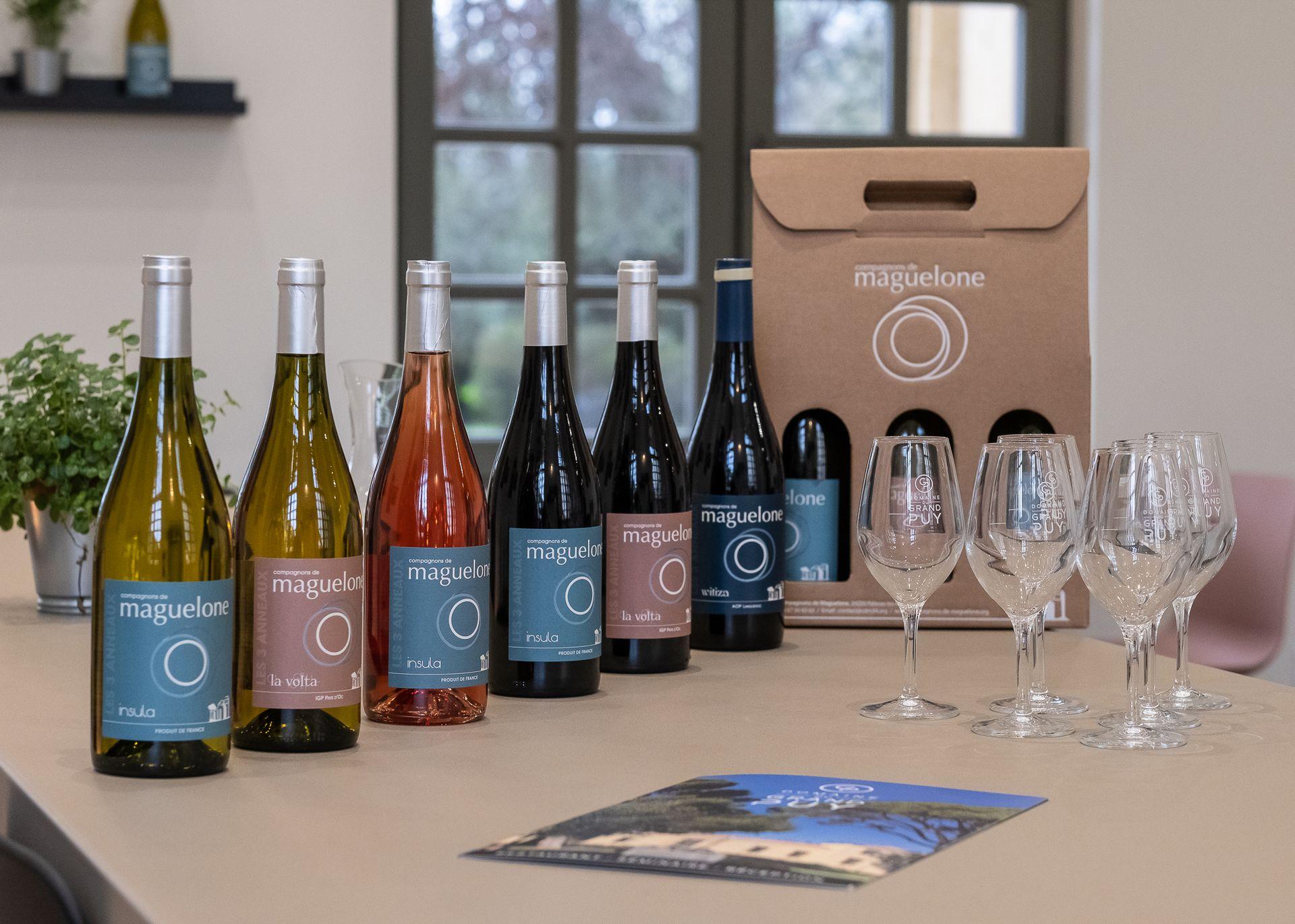 Vin Domaine Grand Puy