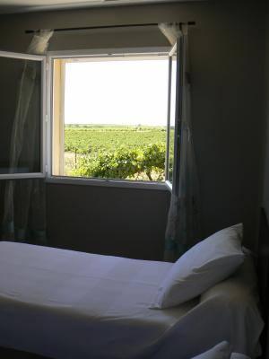 Vue de la chambre donnant sur les vignes