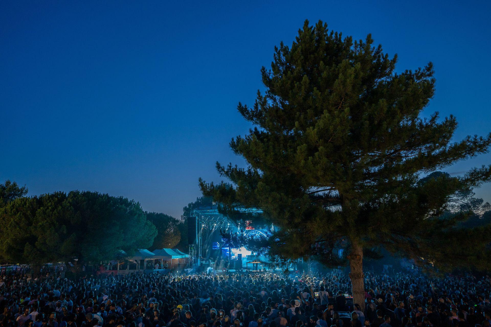 Festivaliers du Family Piknik à la nuit tombante dans la pinède du Domaine de Grandmont à Montpellier