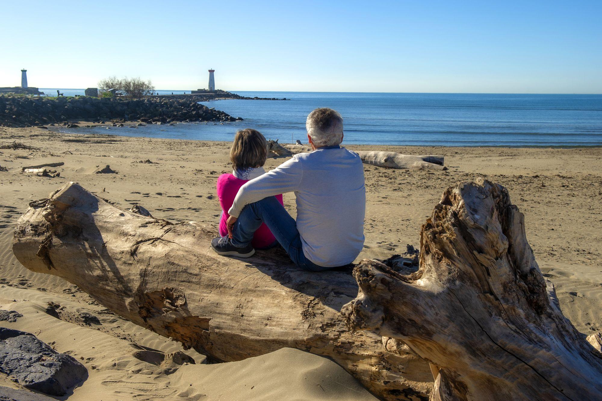Couple assis sur un tronc d'arbre qui admire la Plage de La Tamarissiere