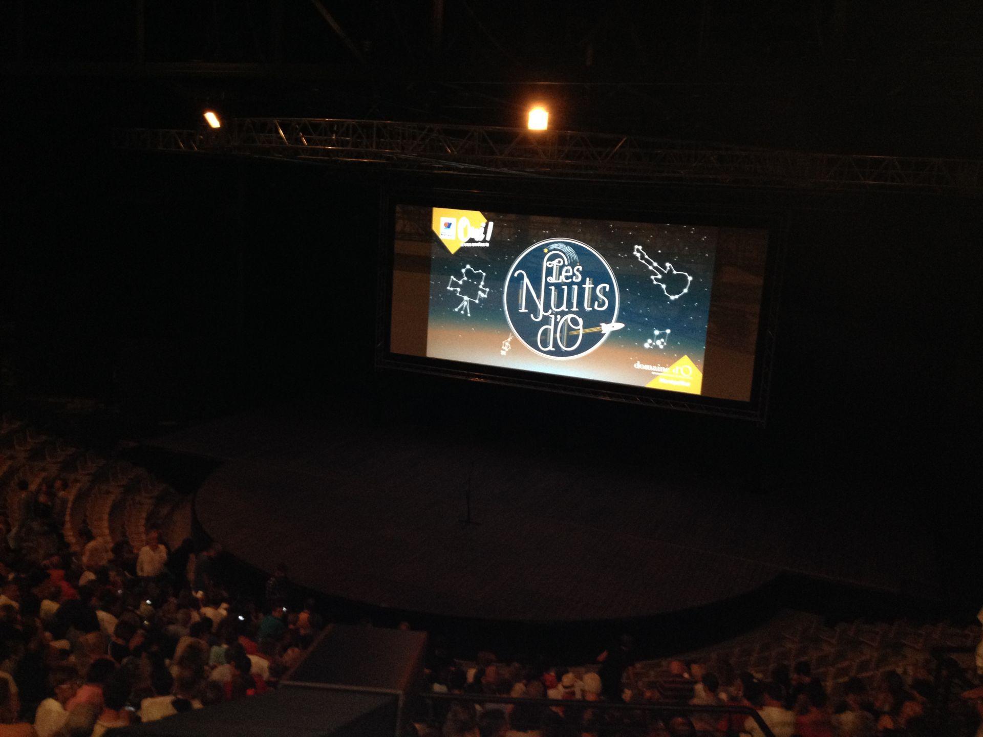 Ecran de cinéma de l'amphithéâtre d'O et spectateurs au Domaine d'O dans le cadre des Nuits d'O
