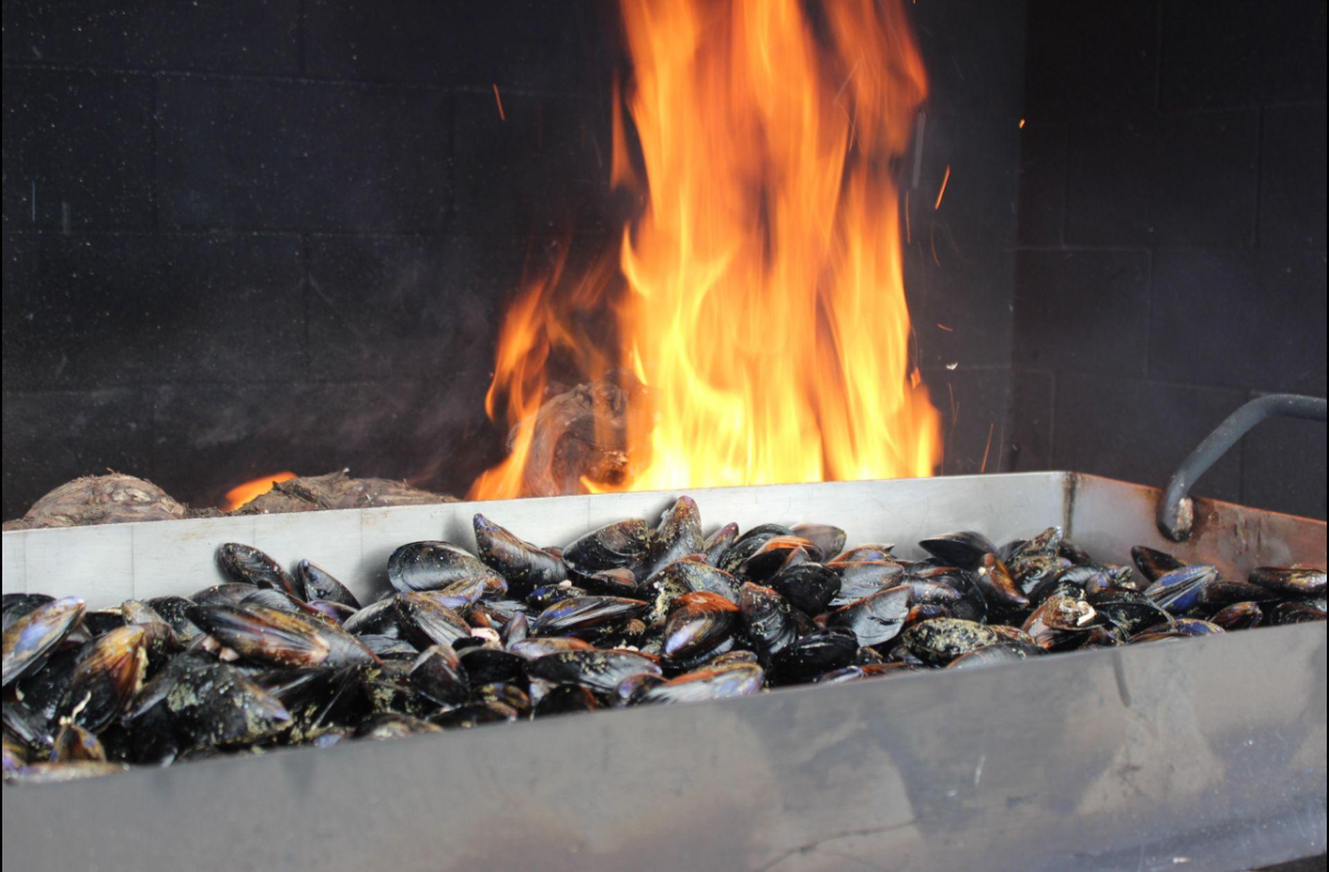 Brasucade de moules au mas conchylicole Chez Titin à Marseillan au bord de la lagune de Thau