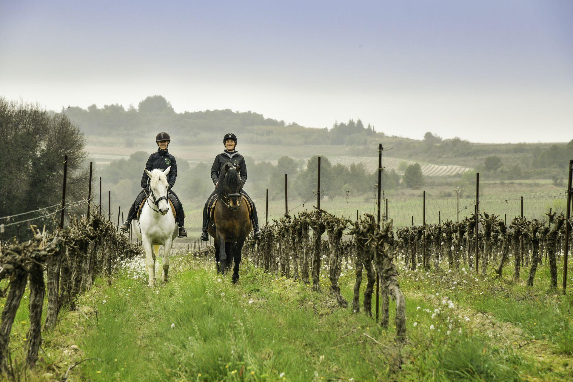 Balade à cheval entre copines dans les vignes avec Les Ecuries de l'Olivier à Montagnac près de Pézenas