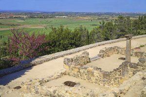 Oppidum d'Ensérune et étang de Montady