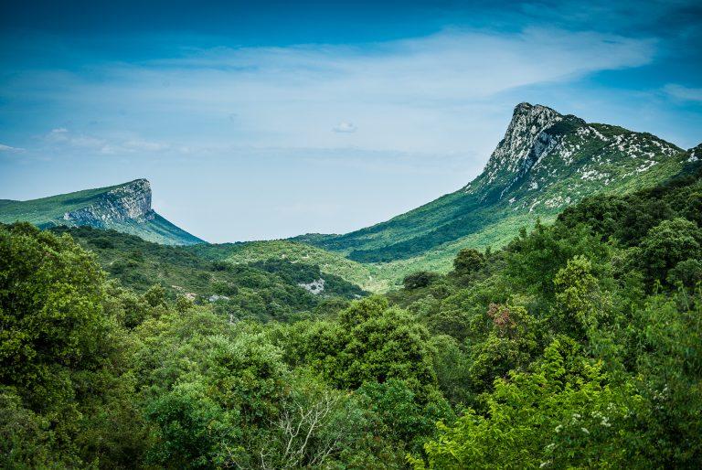Pic St Loup et Hortus