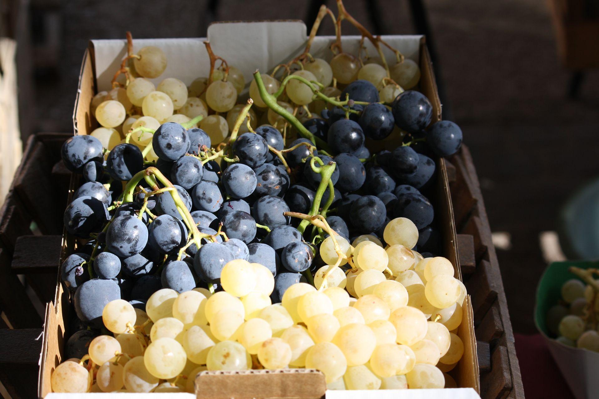 cagette de raisin blanc et noir au marché