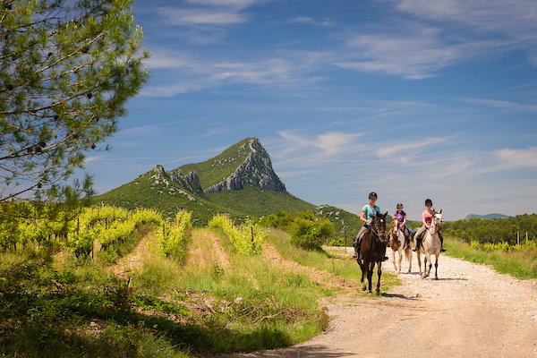 cavalières sur un chemin bordé de vigne avec le pic Saint Loup à l'horizon