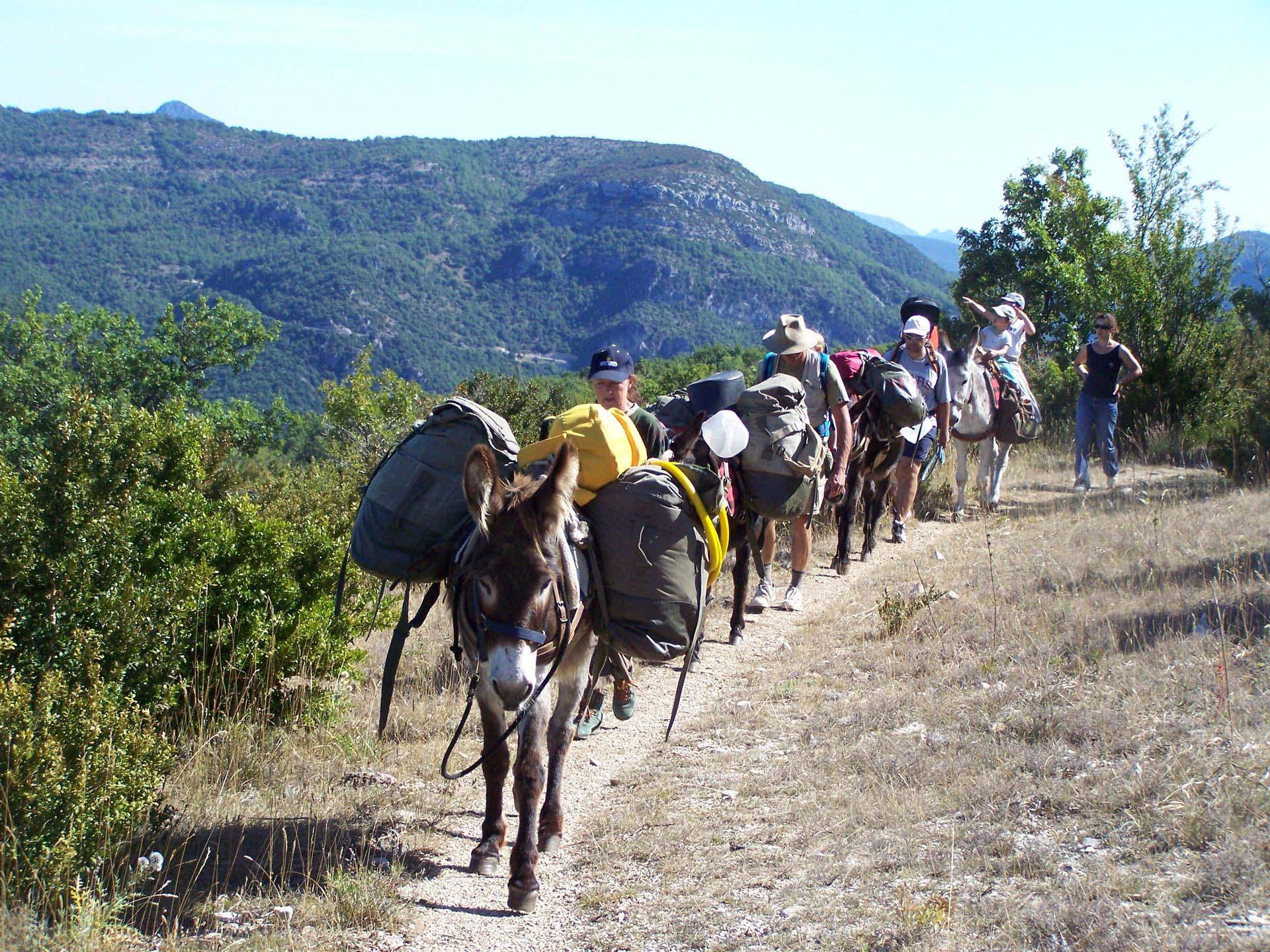 Famille en Randonnée avec des ânes avec Sherpanes
