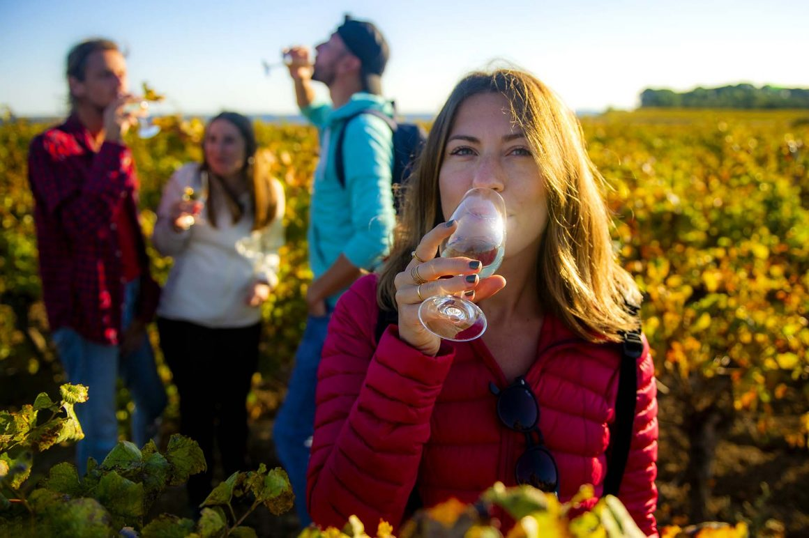 Dégustation de vins dans les vignes