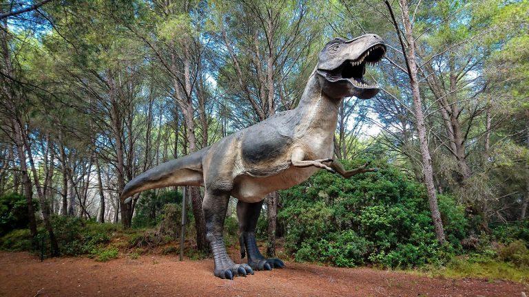 Un tyranosaure au Musée Parc Dinosaure à Mèze